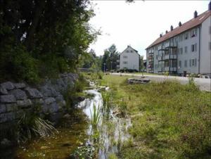 Foto Neckar in Schwenningen nach der Offenlegung